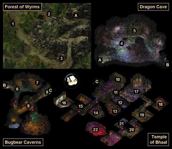 Summary Of Warriors Forest Of Secrets: GameBanshee