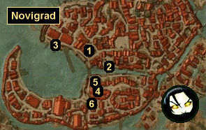 The witcher succubus quest